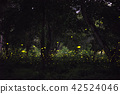 Firefly flying in the night forest 42524046