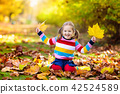 Child in fall park. Kid with autumn leaves. 42524589