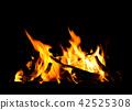 Burning firewood on a black background.  42525308