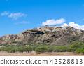하와이 오아후 섬 주립 기념 공원 다이아몬드 헤드 분화구 42528813