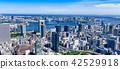 도쿄의 도시 풍경 42529918