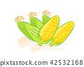 玉米 42532168