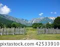 白马村 北阿尔卑斯 夏天 42533910
