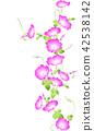 일본적인 나팔꽃 무늬 42538142