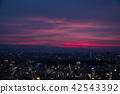 Night scenery in summer that can be burned to red purple Night view of Tokyo / Typhoon night 2018.07.27 a Around Meiji Shrine 42543392