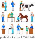Veterinary vector veterinarian doctor man or woman treating pet patients cat or dog illustration set 42543946