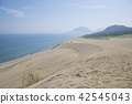Tottori sand dunes in the summer 42545043