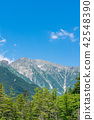 sky, mountain, tree 42548390