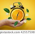 Male Hand Holding Alarm Clock of Orange Fruit 42557598