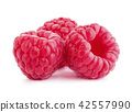 ripe raspberry isolated 42557990