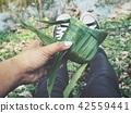Fish of pandan leaves 42559441
