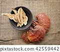 Ganoderma Lucidum - Ling Zhi Mushroom 42559442