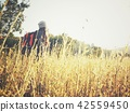 Woman traveling backpack with meadow and mountain 42559450