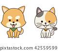 สัตว์เลี้ยงสุนัขและแมวนั่ง 42559599