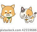 一隻聰明的寵物狗和一隻貓 42559686