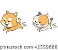 돌아 다니는 애완견과 고양이 42559688