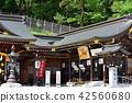 Gokoku shrine 42560680