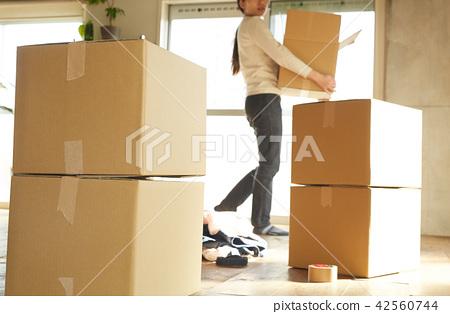 女士們搬家 42560744