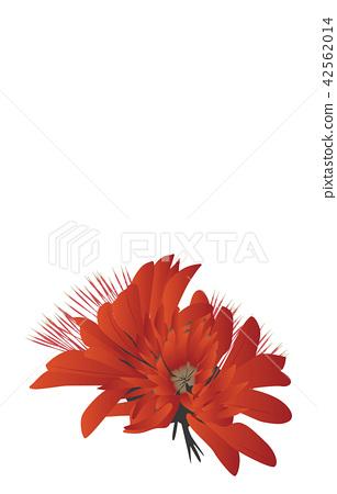 Prefectural Flower Simple Okinawa Deigo 42562014