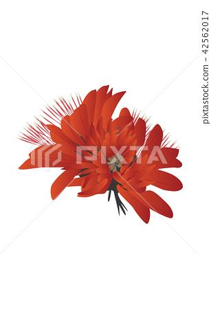 Prefectural Flower Simple Okinawa Deigo 42562017