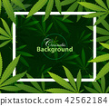 green cannabis leaf drug marijuana herb Background 42562184