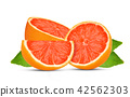 grapefruits isolated on white background 42562303