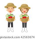 직업 농가 남녀 42563674