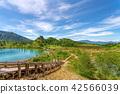 츠 白 根 山 (쿠사 츠 솥 8 월 여름 햇살) 42566039