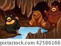 cave, animal, bear 42566166