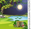 森林 树林 夜晚 42566347