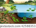 Scene of frogs in a pond 42566353