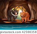 Grizzly bears living in the cave 42566358