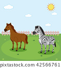 Zebra and horse in nature 42566761