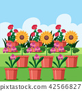 A Set of Flower in Pot 42566827