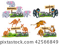 A set of  animals and sign 42566849