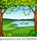 A beautiful jungle landscape 42566940