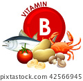 A Set of Vitamin B Food 42566945