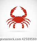 Vector of a crab on white background,. Animals.  42569560