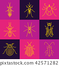 Insect line icon set 42571282
