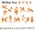 shiba inu,dog in action,happy dog 42574971