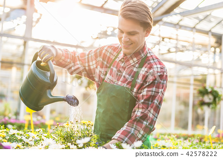 Skilled young man watering houseplants while working as florist  42578222