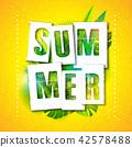 summer, background, vector 42578488