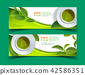 Vector green tea horizontal banner blue tea leaves 42586351