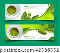 Vector green tea horizontal banner blue tea leaves 42586352
