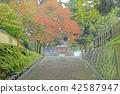 kōfuku-ji, grounds, temple 42587947