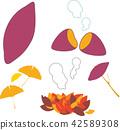 秋天 秋 紅薯 42589308