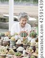 生活,老人,女性,韓國人 42591439