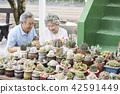 生活,老夫妻,韓國人 42591449