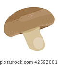 Illustration of mushrooms, Shiitake in autumn seasonal mushrooms 42592001