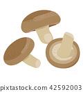 가을이 제철 버섯, 표고 버섯의 일러스트 42592003